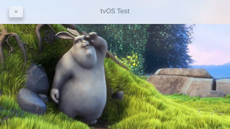 videos in apple tv